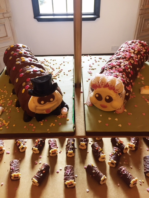 Two caterpiller cakes.